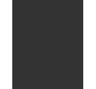Autocad icon 2